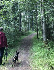 My own trail